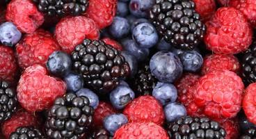 19 versets bibliques sur le fruit de l'Esprit
