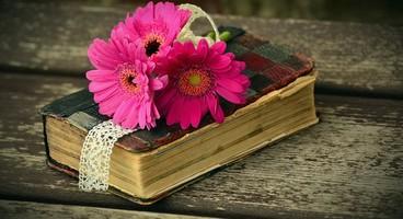Lire la Bible en 1 an