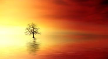 L'Esprit Saint, la dynamique de Dieu